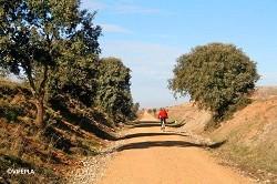 Ruta de la Plata Greenway (Salamanca.-Alba.de.Tormes)