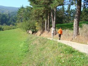 Mutiloa-Ormaiztegi Greenway