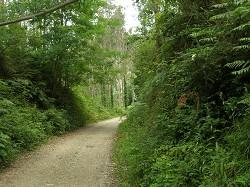 Castro-Traslaviña Greenway