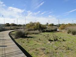 Matagorda Greenway