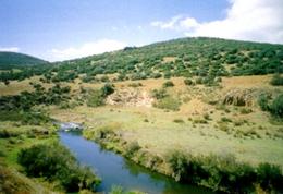 V.V. del Ojailén
