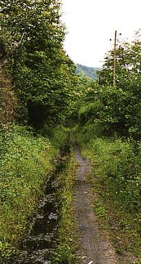 V.V. del Río Negro