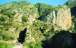 V.V. del Serpis